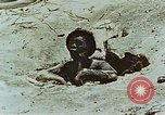 Image of dead Japanese soldiers Eniwetok Atoll Marshall Islands, 1944, second 37 stock footage video 65675041028