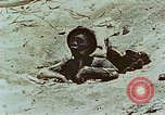 Image of dead Japanese soldiers Eniwetok Atoll Marshall Islands, 1944, second 39 stock footage video 65675041028