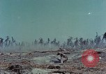 Image of dead Japanese soldiers Eniwetok Atoll Marshall Islands, 1944, second 50 stock footage video 65675041028