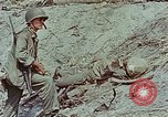 Image of dead Japanese soldiers Eniwetok Atoll Marshall Islands, 1944, second 60 stock footage video 65675041028