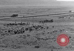 Image of Nomads Iran, 1944, second 4 stock footage video 65675041201