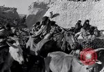 Image of Nomads Iran, 1944, second 15 stock footage video 65675041201
