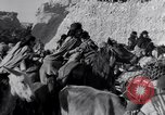 Image of Nomads Iran, 1944, second 16 stock footage video 65675041201