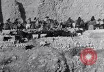 Image of Nomads Iran, 1944, second 22 stock footage video 65675041201