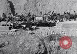 Image of Nomads Iran, 1944, second 27 stock footage video 65675041201