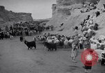 Image of Nomads Iran, 1944, second 58 stock footage video 65675041201