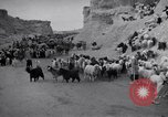 Image of Nomads Iran, 1944, second 59 stock footage video 65675041201