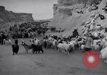 Image of Nomads Iran, 1944, second 60 stock footage video 65675041201