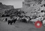 Image of Nomads Iran, 1944, second 62 stock footage video 65675041201