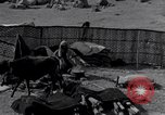 Image of Nomads Iran, 1944, second 58 stock footage video 65675041202