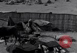 Image of Nomads Iran, 1944, second 59 stock footage video 65675041202