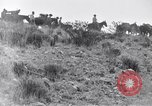 Image of General Obregon El Paso Texas USA, 1916, second 45 stock footage video 65675041207