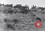 Image of General Obregon El Paso Texas USA, 1916, second 48 stock footage video 65675041207
