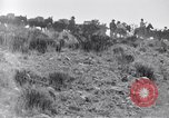 Image of General Obregon El Paso Texas USA, 1916, second 50 stock footage video 65675041207