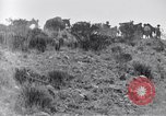 Image of General Obregon El Paso Texas USA, 1916, second 54 stock footage video 65675041207
