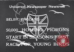 Image of Pigeons Selby England United Kingdom, 1933, second 1 stock footage video 65675041255