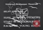 Image of Pigeons Selby England United Kingdom, 1933, second 3 stock footage video 65675041255