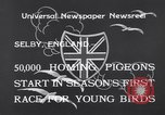 Image of Pigeons Selby England United Kingdom, 1933, second 4 stock footage video 65675041255