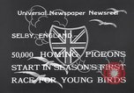 Image of Pigeons Selby England United Kingdom, 1933, second 5 stock footage video 65675041255