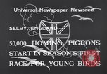 Image of Pigeons Selby England United Kingdom, 1933, second 9 stock footage video 65675041255
