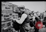 Image of Pigeons Selby England United Kingdom, 1933, second 13 stock footage video 65675041255