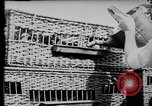 Image of Pigeons Selby England United Kingdom, 1933, second 15 stock footage video 65675041255