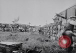 Image of Pigeons Selby England United Kingdom, 1933, second 36 stock footage video 65675041255