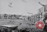 Image of Pigeons Selby England United Kingdom, 1933, second 37 stock footage video 65675041255