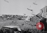 Image of Pigeons Selby England United Kingdom, 1933, second 38 stock footage video 65675041255