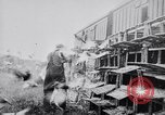 Image of Pigeons Selby England United Kingdom, 1933, second 47 stock footage video 65675041255