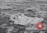 Image of Floods Stockton California USA, 1936, second 58 stock footage video 65675041291