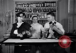 Image of Scottish Terrier New York City USA, 1936, second 32 stock footage video 65675041299