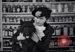 Image of Scottish Terrier New York City USA, 1936, second 44 stock footage video 65675041299