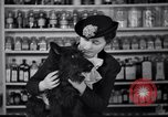 Image of Scottish Terrier New York City USA, 1936, second 45 stock footage video 65675041299