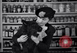 Image of Scottish Terrier New York City USA, 1936, second 46 stock footage video 65675041299