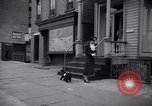 Image of Scottish Terrier New York City USA, 1936, second 52 stock footage video 65675041299