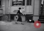 Image of Scottish Terrier New York City USA, 1936, second 55 stock footage video 65675041299