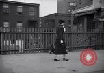 Image of Scottish Terrier New York City USA, 1936, second 59 stock footage video 65675041299