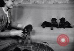 Image of Doberman Pinscher Vancouver British Columbia Canada, 1947, second 7 stock footage video 65675041344