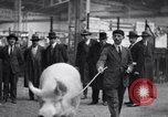 Image of President Doumergue Versailles France, 1931, second 36 stock footage video 65675041401