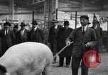 Image of President Doumergue Versailles France, 1931, second 37 stock footage video 65675041401