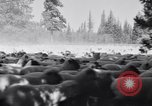 Image of ranchers Cascade Mountains Washington USA, 1933, second 25 stock footage video 65675041408