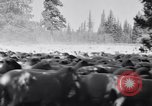 Image of ranchers Cascade Mountains Washington USA, 1933, second 26 stock footage video 65675041408