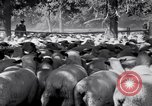 Image of ranchers Cascade Mountains Washington USA, 1933, second 33 stock footage video 65675041408