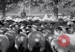 Image of ranchers Cascade Mountains Washington USA, 1933, second 35 stock footage video 65675041408