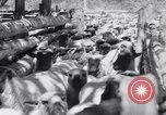 Image of ranchers Cascade Mountains Washington USA, 1933, second 37 stock footage video 65675041408
