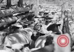 Image of ranchers Cascade Mountains Washington USA, 1933, second 38 stock footage video 65675041408