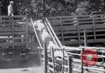 Image of ranchers Cascade Mountains Washington USA, 1933, second 48 stock footage video 65675041408