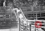 Image of ranchers Cascade Mountains Washington USA, 1933, second 49 stock footage video 65675041408
