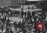 Image of Cannery workers Stockton California USA, 1937, second 13 stock footage video 65675041426